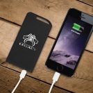 Theta Power Bank