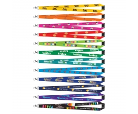 Colour Max Lanyard